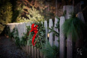 Winter Weddings Smoky Mountains